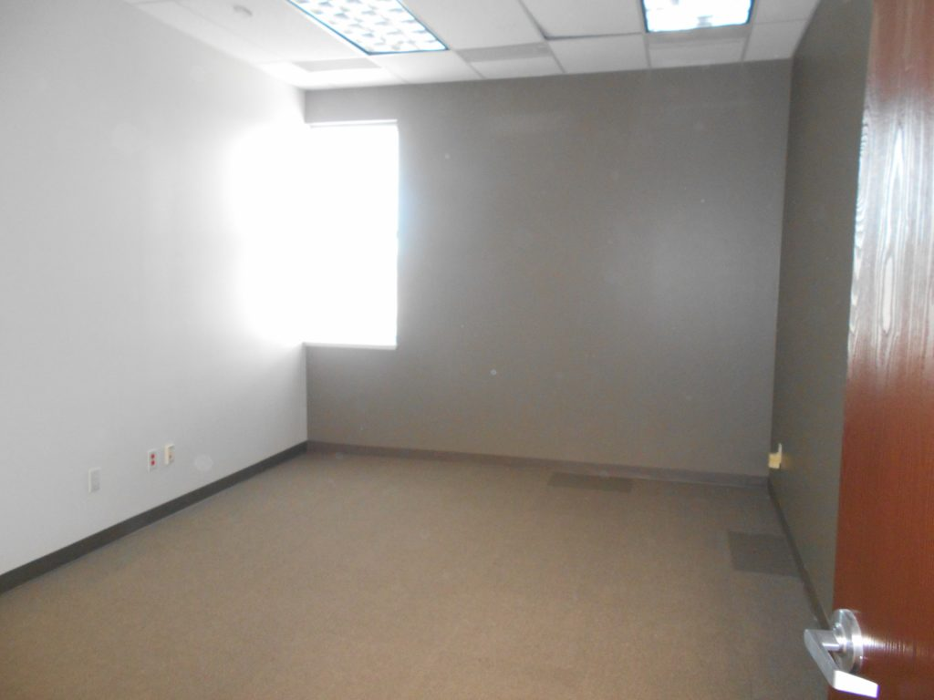 Commercial interior painting new tenant finish job eco for Commercial mural