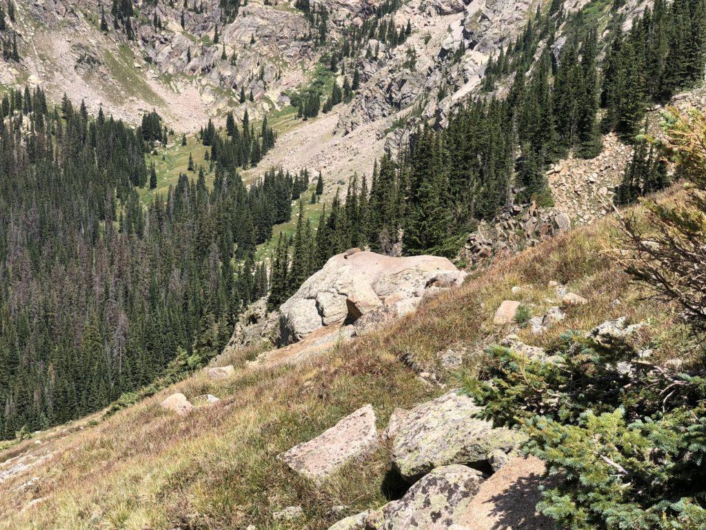 Steep_Switchbacks_Hiking_Near_Wildlife